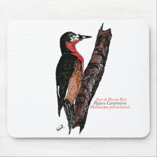 Carpintero de Puerto Rico/Puerto Rican Woodpecker Mouse Pads