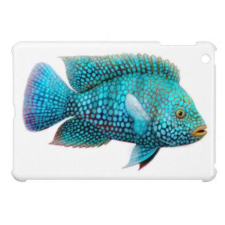 Carpintis Texas Cichlid Fish iPad Mini Case