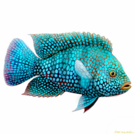 Carpintis Texas Cichlid Fish Ornament Photo Sculpture Ornament