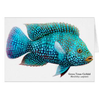Carpintis Texas Cichlid Greeting Card