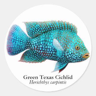 Carpintis Texas Cichlid Sticker