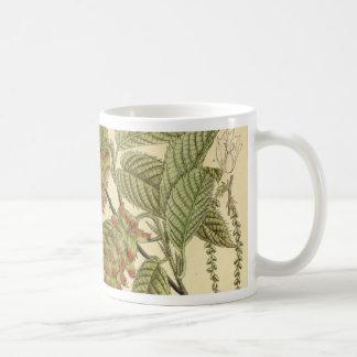 Carpinus japonica, Betulaceae Coffee Mug