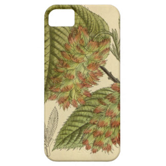 Carpinus japonica, Betulaceae iPhone SE/5/5s Case