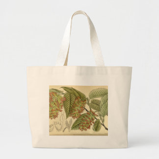 Carpinus japonica, Betulaceae Large Tote Bag