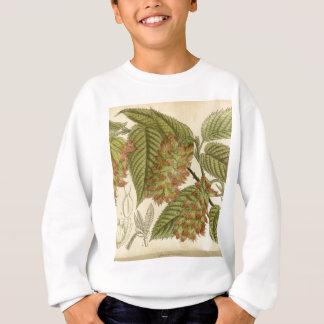 Carpinus japonica, Betulaceae Sweatshirt