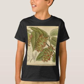 Carpinus japonica, Betulaceae T-Shirt