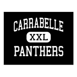 Carrabelle - Panthers - High - Carrabelle Florida Postcard