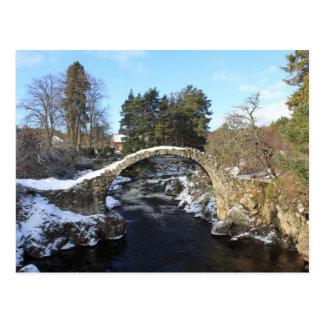 Carrbridge, Scotland Postcard