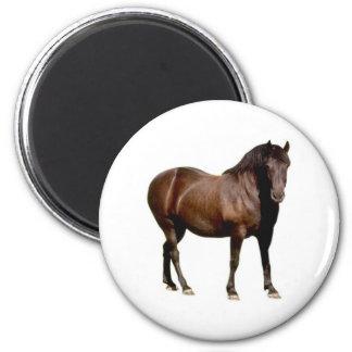 carrera de caballos equistrian del montar a caball imán redondo 5 cm