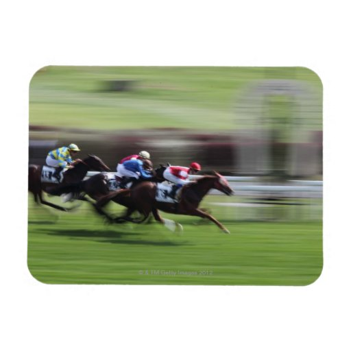 carrera de caballos imán