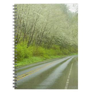 Carretera alejada a través del bosque libro de apuntes con espiral
