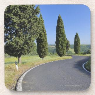 Carretera con curvas alineada con los árboles de C Posavasos De Bebidas