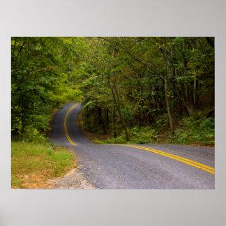 Carretera con curvas póster