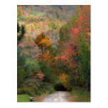 Carretera nacional en otoño tarjeta postal