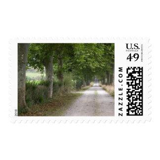Carretera nacional rural de la suciedad cerca de sello