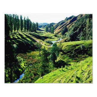 Carretera olvidada NZ del mundo Fotografías