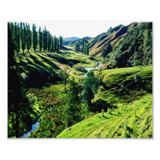 Carretera perdida NZ de las tierras de labrantío Fotografías