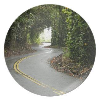 Carreteras con curvas a través de la selva plato