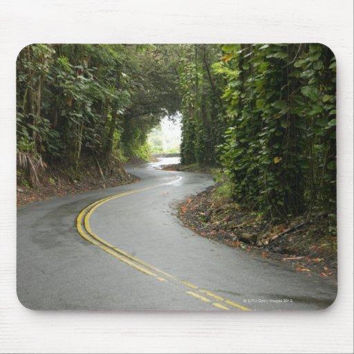 Carreteras con curvas a través de la selva tropica alfombrilla de ratón