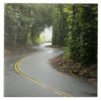 Carreteras con curvas a través de la selva tropica azulejos cerámicos