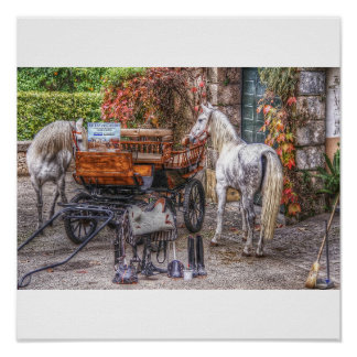 Carriage and Horses Poster