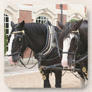 Carriage draft horses drink coaster