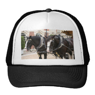 Carriage draft horses trucker hat