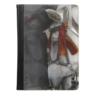 Carriage Horse and Its Reflection iPad Air Case