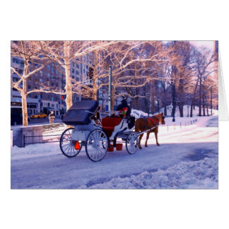 Carriage Ride Card