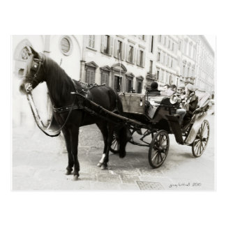 Carriage Ride in Florence Italy Postcard