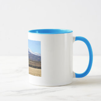 carrick on suir view mug