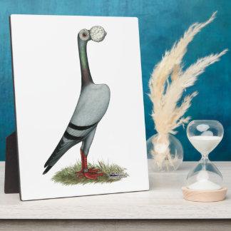 Carrier Pigeon 2012 Plaque