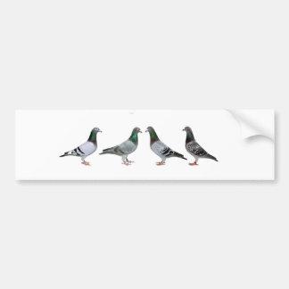 Carrier pigeons champions bumper sticker