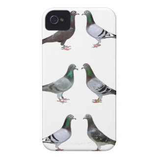 Carrier pigeons champions iPhone 4 case