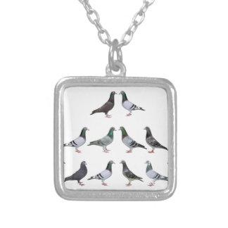 Carrier pigeons champions necklaces