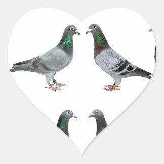 Carrier pigeons champions heart sticker