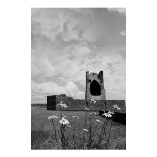 carrigafoyle castle tower with wild daisies posters