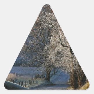 Carril ahumado de Hyatt de las montañas Pegatina Triangular