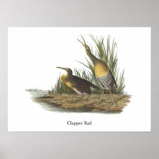 Carril de la chapaleta Juan Audubon Posters