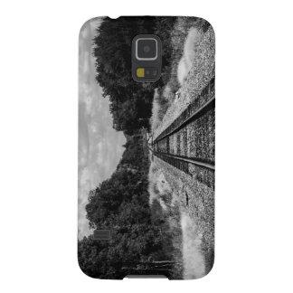 Carriles Carcasa Galaxy S5