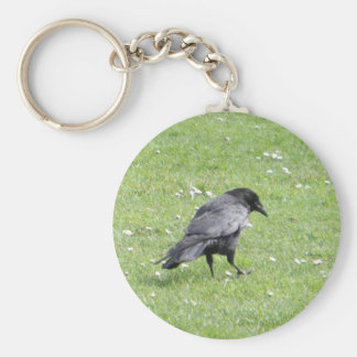 Carrion Crow In Grass Keychain