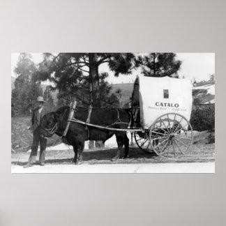 Carro de la vaca del rancho de Grandview del Catal Póster