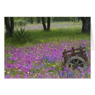 Carro de madera en el campo del Phlox, capos azule Tarjeta De Felicitación