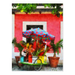 Carro San Juan, Puerto Rico de la flor