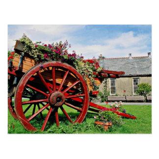 Carro viejo flores de Snowdonia Postal
