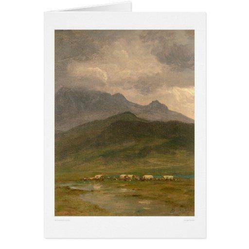 Carros cubiertos por Bierstadt (0101A) Felicitaciones
