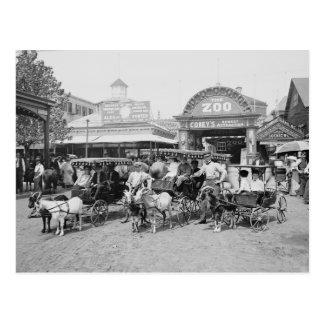 Carros de la cabra en Coney Island, 1910 Tarjeta Postal