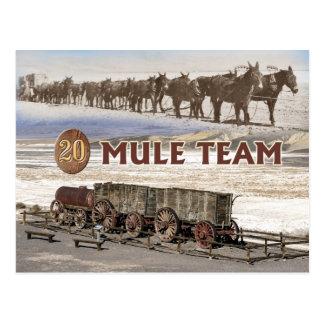 carros del equipo de la Veinte-mula Death Valley Tarjeta Postal