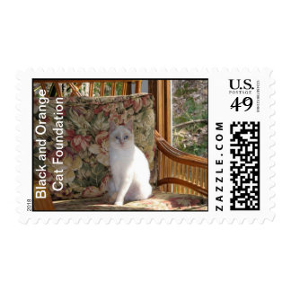Carrot Cate Postage