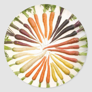 Carrot Color Wheel Classic Round Sticker